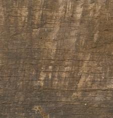 35801=38138 – NEO Wood 14 – z1702_W14_euro_reclam_wood_mF_1S_SEG